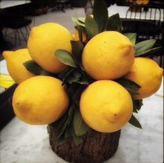 Table decoration with real lemons