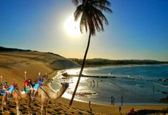 Watch: Dunes Of Genipapu - Natal, Brazil - http://destinations-for-travelers.blogspot.com.br/2014/06/dunas-de-genipabu-extremoz-rio-grande-do-norte-brasil.html