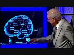 Video divulgativo donde el neurocientífico Joaquim Fuster explica los mecanismos de la memoria humana. En concreto, la memoria activa o de trabajo. Copyright...