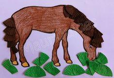 Mauriquices: Animais | Animals