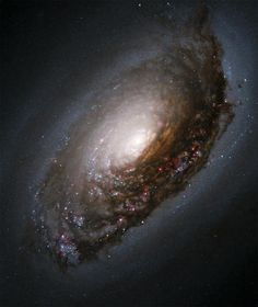 The Black Eye Galaxy, M64. M64's nickname comes from its striking dark band of dust. The galaxy has an unusual ring of gas and stars that rotates the opposite way to the gas and stars closer to the centre. These and the black eye are thought to have resulted from a collision with another galaxy. - Photo Credit: NASA and The Hubble Heritage Team (AURA/STScI)
