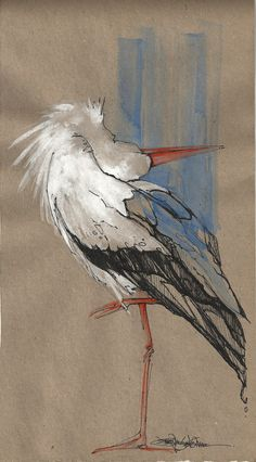 Stork by Jennifer Kraska Watercolor Bird, Watercolor Animals, Watercolor Paintings, Bird Drawings, Animal Drawings, Vogel Illustration, Animal Sketches, Wildlife Art, Animal Paintings