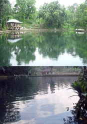 Telaga Air Cempaka Bumijawa Tegal Jawa Tengah