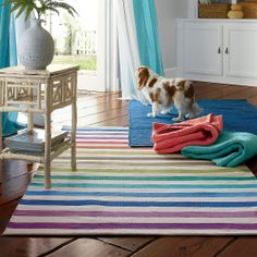 Lay down some fun with this vibrant, rainbow-patterend rug collection!