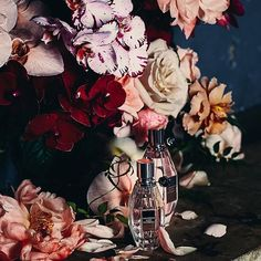 Still Life   @viktor_and_rolf ✖️@gritty_pretty  Photo: @hannahgrossberg   #myviolet#viktorandrolf#flowerbombbloom