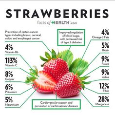 Health facts, health diet, health and wellness, health fitness Health Facts, Health Diet, Health And Nutrition, Health And Wellness, Health Fitness, Health Cleanse, Vegetable Nutrition, Health Logo, Health Eating