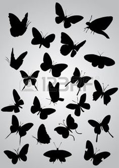 tattoo schmetterling: Schmetterlings-Silhouetten, vector Illustration