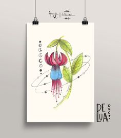 Brinco de Princesa - órbita floral - Amanda Mol | Loja