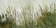 Green Grass Silhouette - Fototapeter & Tapeter - Photowall