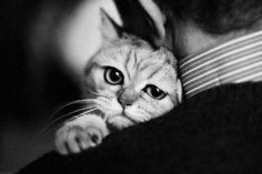 It was a bad day and I need a hug!