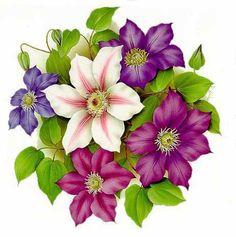 Flora Flowers, Beautiful Flowers, Art Floral, Illustration Blume, Apple Prints, Colorful Drawings, Fabric Painting, Vintage Flowers, Watercolor Flowers
