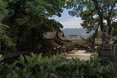 https://flic.kr/p/t5UeiK | 厳島神社(裏手から)