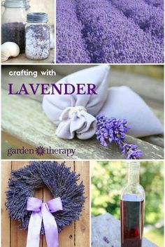 Lavender plays double duty as a beautiful garden perennial and a medicinal herb. Growing lavender is uncomplicated if you have a hot, sunny spot with good drainage. The woody stems will grow aromatic leaves. Lavender Uses, Lavender Crafts, Lavender Recipes, Growing Lavender, Lavender Garden, Lavender Sachets, Lavender Blue, Lavender Fields, Growing Herbs