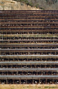 Welcome to the personal website of the German artist Andreas Gursky. Check out his latest exhibitions, get news and explore the artwork of the Düsseldorf based photographer. Andreas Gursky, Street Photography, Landscape Photography, Art Photography, Aerial Photography, Hilla Becher, Famous Photographers, Photoshop, Ansel Adams