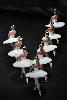 swan lake // those tutus! Kinds Of Dance, Just Dance, Ballet Art, Ballet Dancers, Dance Art, Dance Music, Pretty Ballerinas, Ballerina Dancing, Dance Like No One Is Watching