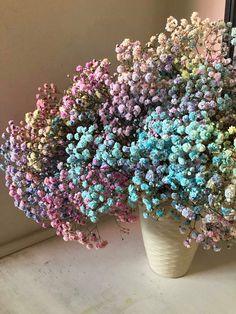 Blooming Trees, Flower Aesthetic, Dried Flowers, Planter Pots, Babies Breath, Room Decor, Backyard, Interior Ideas, Garden