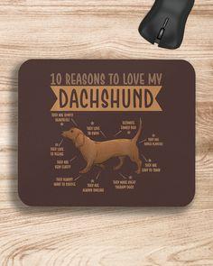 10 Reasons To Love Dachshund Best Dog - Chocolate dapple dachshund miniature, black dachshund, baby dogs puppy #dachshundsofinstagram #minidachshund #sausagedog, dried orange slices, yule decorations, scandinavian christmas Dapple Dachshund Miniature, Dapple Dachshund Puppy, Black Dachshund, Dachshund Puppies For Sale, Wire Haired Dachshund, Dachshund Quotes, Dachshund Shirt, Dachshund Gifts, Funny Dachshund