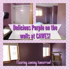 Delicious Purple for the walls @ CAWES!