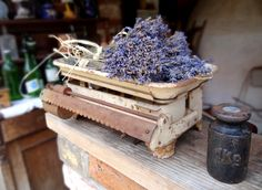 Lavender fest in Tihany How Beautiful, Hungary, Budapest, Dreams, Places, Flowers, Crafts, Travel, Life