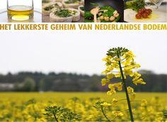 BRASSICA | Het lekkerste geheim van Nederlandse bodem. Verkregen uit de eerste koude persing van koolzaad #koolzaadolie #foodservice
