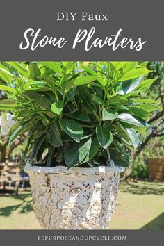 Faux stone planters are all the rave these days. No one wants a pretty and clean looking new planter anymore. We want that aged patina and worn weathered look, right? This poses a problem if you don't want to spend a lot (whew those aged pots can be pricey). Also, I haven't seen many stone hanging planters. That's when I decided to make my new hanging plastic pot look old with a DIY faux stone effect with spackling paste. Let me show you! Diy Projects On A Budget, Easy Diy Projects, Stone Planters, Hanging Planters, Farmhouse Style, Farmhouse Decor, Stone Texture, We Can Do It, Faux Stone