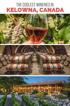 Some wineries near Kelowna, B. take tasting to a whole other level by pairing their robust rosés with stunning scenery and science experiments. Here are the best wineries in Kelowna for those wanting a cool wine tour. West Coast Canada, Backpacking Tips, Okinawa Japan, Vacation Trips, Vacation Travel, Beach Travel, Canada Travel, Wine Country, Cross Country