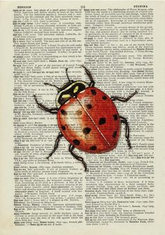 sweet ladybug printed on old page from vintage by FauxKiss on Etsy, $12.00