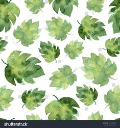 Watercolor pattern of tropical leaves, green jungle pattern, floral tropical background. Suitable for wallpaper and fabric design.