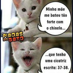 Tadinho!
