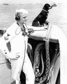 1943 Coast Guard dog of the year - Sinbad