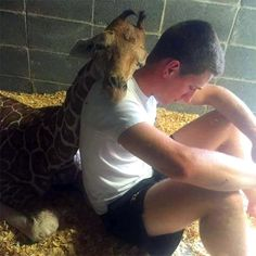 This zoo worker has a difficult time seeing animals in captivity, so he sits with them to give them comfort.