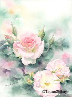 Tatsuo Shibuya Watercolor Rose, Watercolor Artwork, Watercolor Artists, Watercolor Cards, Watercolor Landscape, Watercolor Projects, Botanical Illustration, Japanese Art, Flower Art