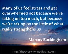 Marcus Buckingham, Seven Habits, Feeling Stressed, Self Care, Recovery, Brain, Mystery, Lord, Motivation