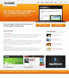 http://themeforest.net/item/iconic-a-bold-new-professional-web-layout/36438?WT.ac=category_thumb.seg_1=category_thumb.z_author=epicera