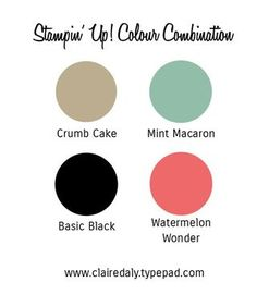 Stampin' Up! Color / Colour combination using Mint Macaron and Watermelon Wonder together.