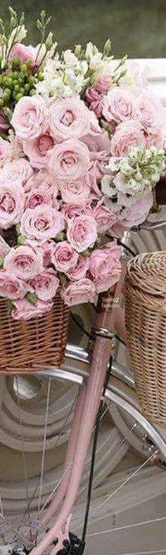 Jadranka & Beautiful world My Flower, Pretty In Pink, Beautiful Flowers, Rose Cottage, Everything Pink, Beautiful World, Pink Roses, Floral Arrangements, Gardening