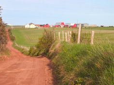 Country Road and Farm, Prince Edward Island, Canada Photographic Print by Julie Eggers - AllPosters.co.uk