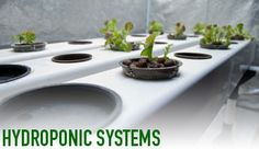 Midwest Hydroponic Systems
