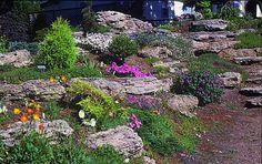 natural terraced rock garden - Decoist