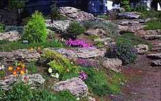 Let's Rock!: 20 Fabulous Rock Garden Design Ideas