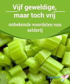 Vijf #geweldige, maar toch vrij onbekende voordelen van #selderij Wist je dat selderij een van de #weinige groenten is die geen voedingsstoffen verliezen wanneer je het kookt? Je kunt selderij dus zowel rauw als gekookt consumeren en in beide gevallen van dezelfde voordelen profiteren. Leer meer in dit artikel! Healthy Tips, Healthy Recipes, C'est Bon, Superfood, Celery, Voordelen Van, Smoothies, Benefit, Detox