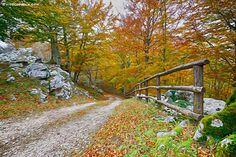 Monti alburni - Campania Italy