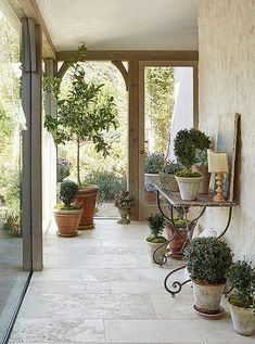 A glassed-in walkway leads to the children's rooms at Patina Farm, and is lined with potted plants in terracotta pots.