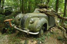 Michael Fröhlich is a vintage car collector who buys cars, often in road worthy condition and leaves them to rot in back yard.  Interesting article #Abandoned