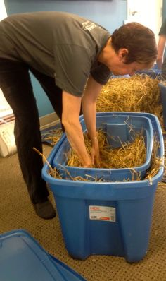 Don't forget - always use straw-not hay-for  #feralcat shelters.  Straw repels moisture, making it ideal for keeping #cats warm. #TNR