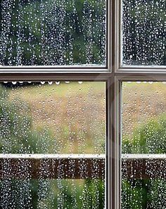 Just watching the Rainy day....peaceful