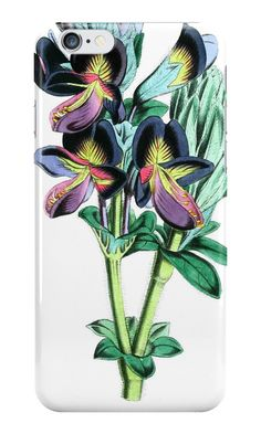 Floral iPhone case, vintage, flower, botanical, floral, nature, green, colourful, biology, botany, leaves, organic, natural, plant