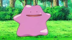 Pokémon GO incluirá Ditto em sua nova atualização junto aos Pokémon Shiny.
