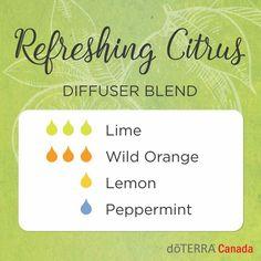 Refreshing Citrus Diffuser Blend 3 drops Lime 3 drops Wild Orange 1 drop Lemon 1 drop Peppermint