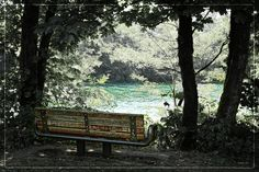 Park Bench -  DMSprouseArt.com
